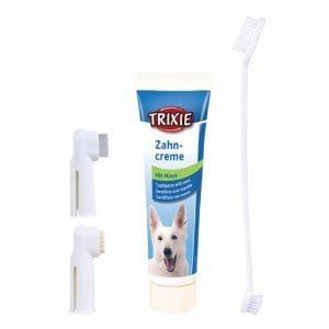 Tannpleiesett til hund