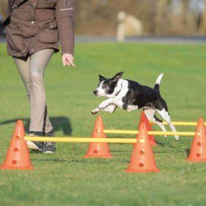 agility hinder