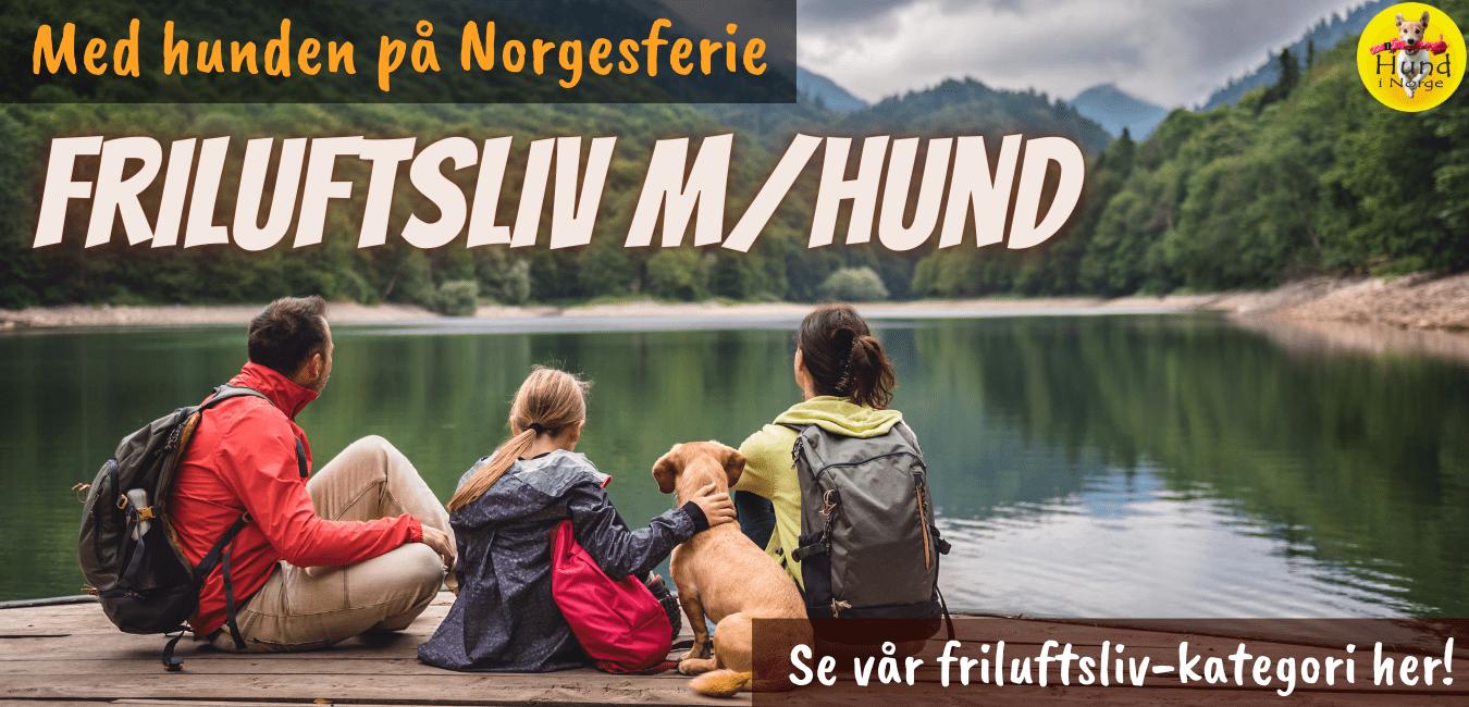 Friluftliv Hund i Norge