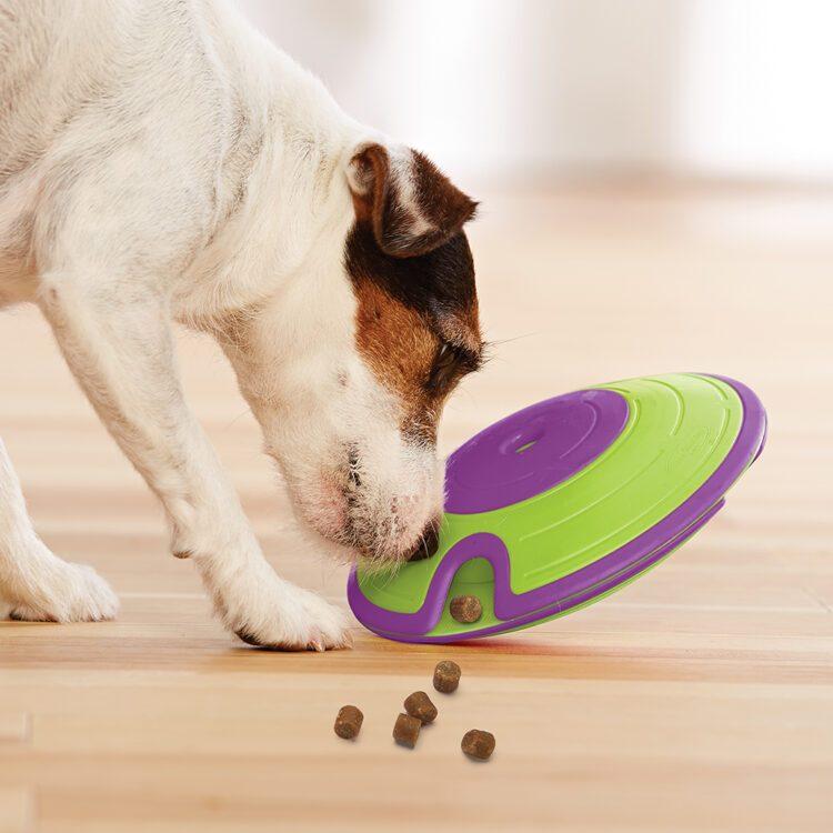 nina ottoson dog treat maze aktivitetsleke hundeleke