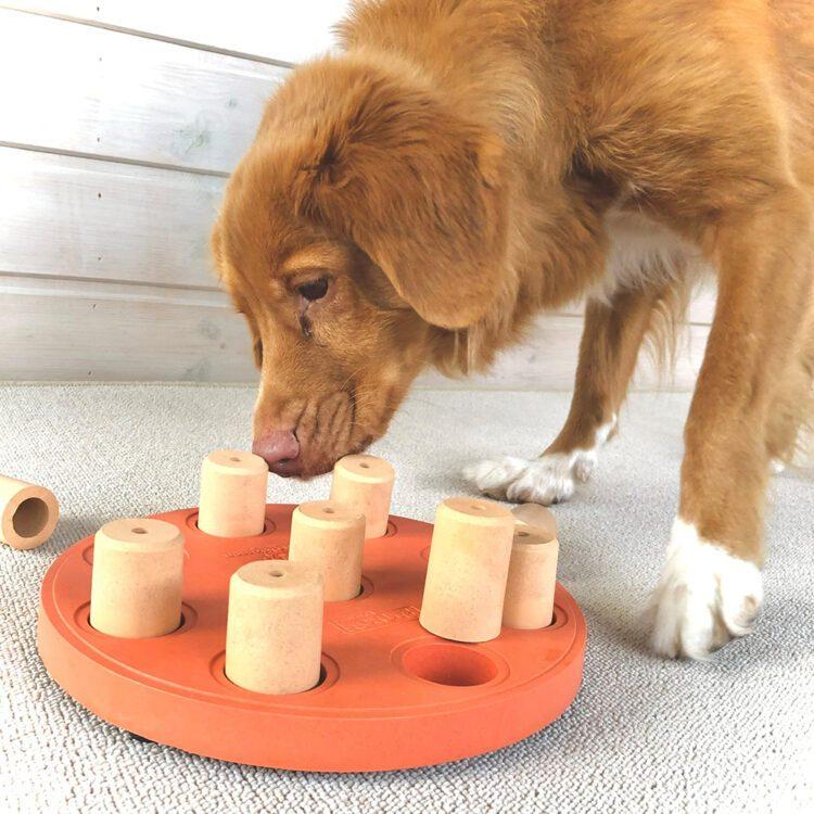 nina ottoson dog smart composite aktivitetsleke hundeleke